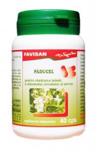 Paducel Tonic Cardiac 40 cps Favisan