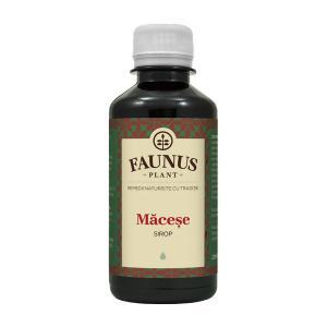 Sirop Macese 200 ml Faunus Plant