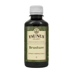 Tinctura Brusture 200 ml Faunus Plant